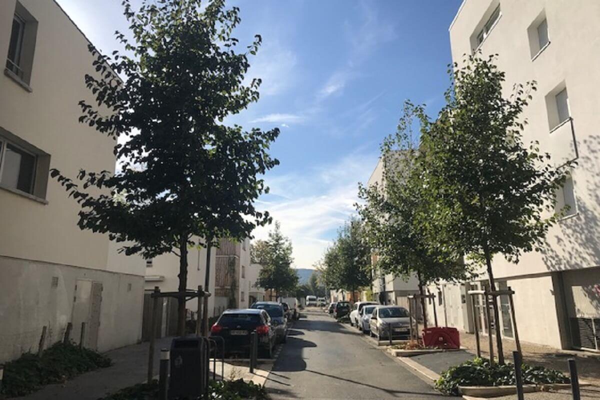 GRENOBLE Chatelet alignement arbres